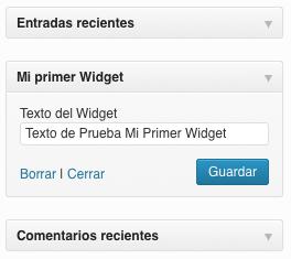 Widget con formulario de opciones